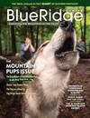Blue Ridge Country November/December 2020